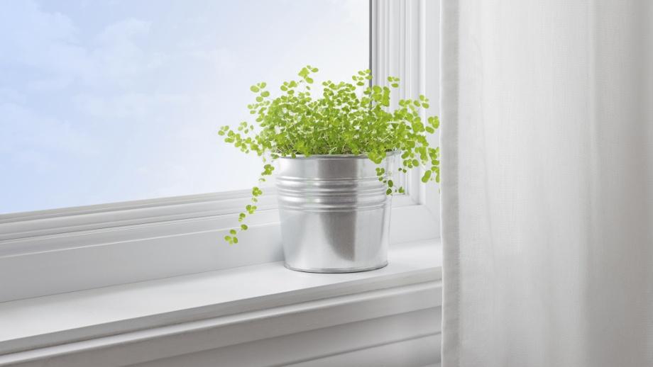 okna drewniane białystok
